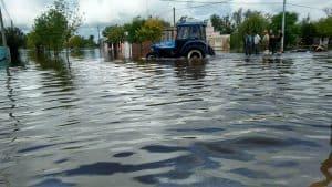 """""""El agua que está inundando los pueblos está cargada de pesticidas"""""""